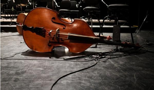 Going. | 23. Międzynarodowy Festiwal Nova Muzyka i Architektura - Toruńska Orkiestra Symfoniczna