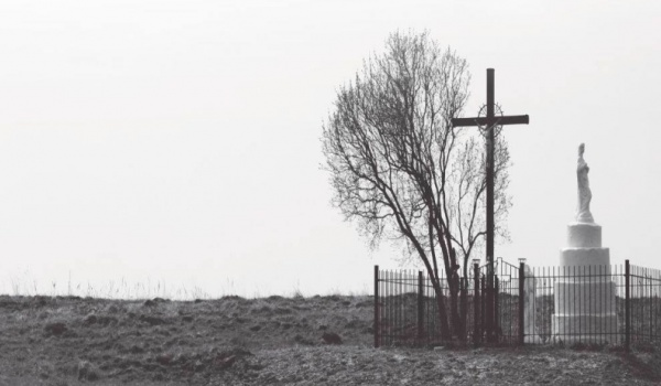 Going. | W martwym punkcie - pokaz filmu o rzezi wołyńskiej - Instytut Pamięci Narodowej Oddział w Lublinie