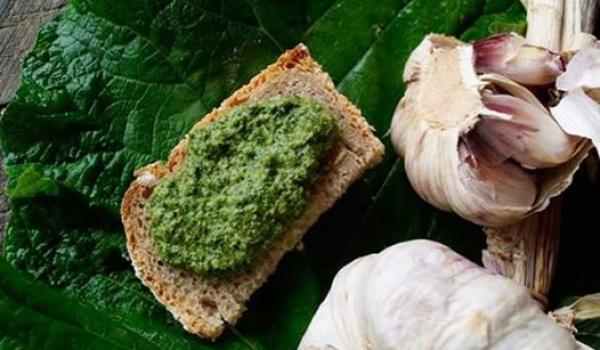 Going. | Bioróżnorodność w pożywieniu - Chlebak Bistro