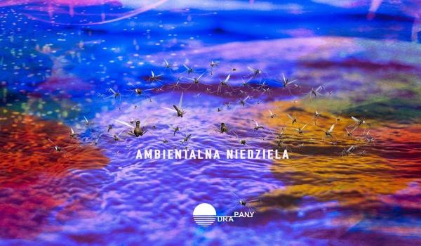Going. | Ambientalna Niedziela: PLAL (Jakub Walczak) - Odra-Pany