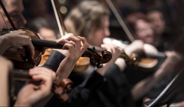 Going. | Letnie Koncerty na Grochowskiej - Sinfonia Varsovia