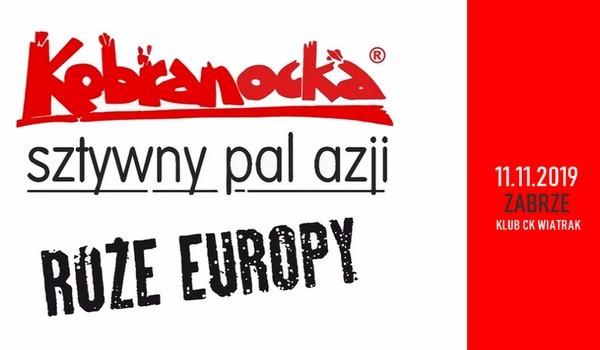 Going. | Kobranocka, Róże Europy, Sztywny Pal Azji - Klub CK Wiatrak