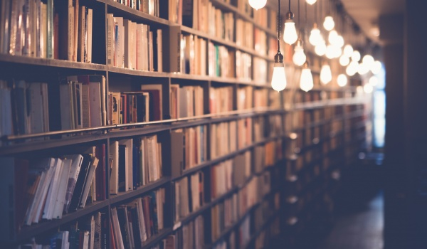 Going.   Letni kiermasz książek - Muzeum Narodowe w Szczecinie