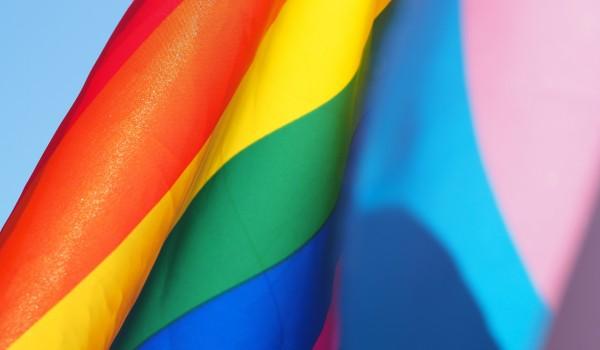 Going.   Przegięty benefit na III Marsz Równości w Katowicach - Drzwi Zwane Koniem