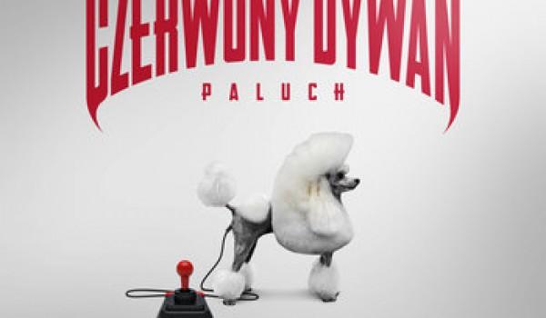 Going. | Paluch - Czerwony Dywan - Pod Palmą