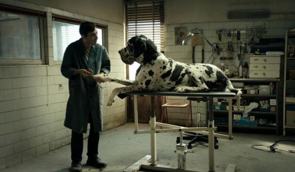 Going. | Dogman - Kino na Szekspirowskim