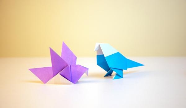 Going.   Zajęcia z origami - Lingua Pro