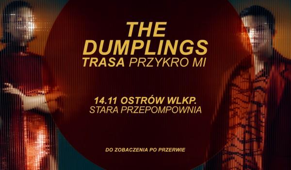 Going. | The Dumplings - Ostrów Wielkopolski | Trasa Przykro Mi - Klub Stara Przepompownia