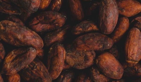 Going. | Ecstatic cacao dance & birthday ceremony - FaraRaRa