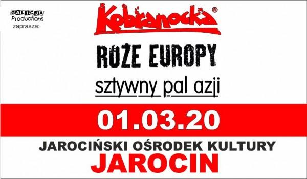 Going. | Kobranocka, Sztywny Pal Azji, Róże Europy - Jarociński Ośrodek Kultury