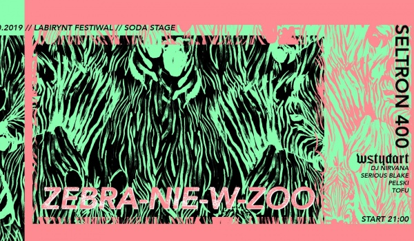 Going. | Gdzie Jest Zebra? // Seltron 400 i wstydart - SODA Underground Stage