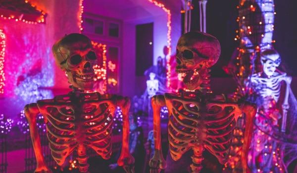 Going. | Halloween - No Problem - Bracka 20