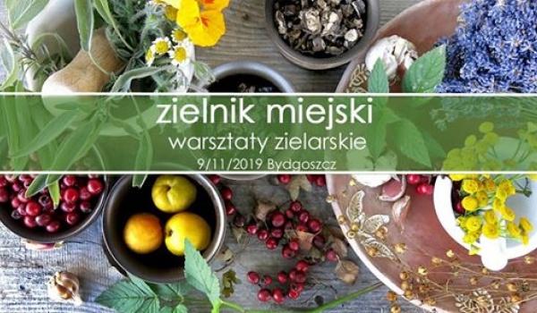 Going. | Zielnik miejski - warsztaty zielarskie - Skrzynka na bajki - pracownia i księgarnia dla dzieci