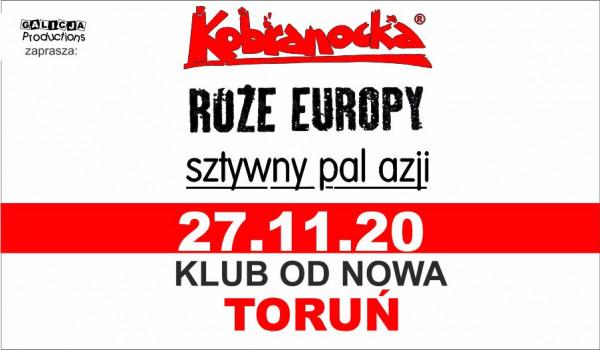 Going. | Kobranocka, Róże Europy, Sztywny Pal Azji – Toruń - Klub Od Nowa