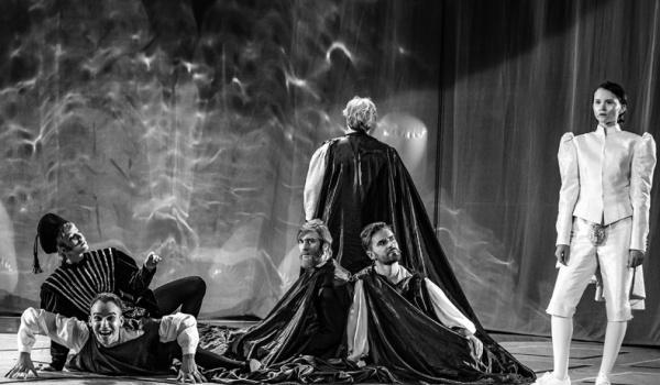 Going. | Wieczór trzech króli z audiodeskrypcją i tłumaczeniem - Teatr im. Juliusza Osterwy w Lublinie