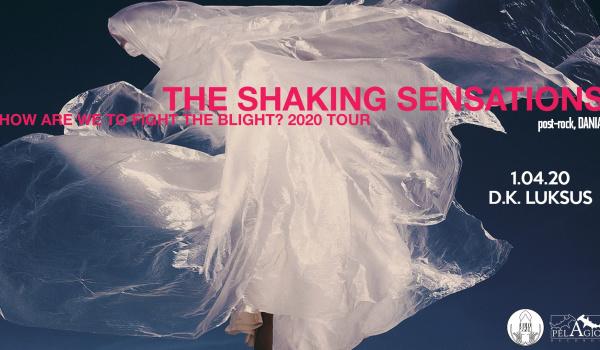 Going. | The Shaking Sensations | Wrocław - D.K. Luksus