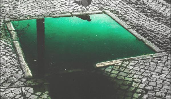Going. | Aneta Winiarska – O Codzienności – wystawa fotografii - Piękno Panie