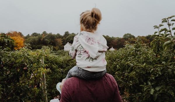 Going. | Warsztaty rodzicielskie z Pozytywnej Dyscypliny - Zatoka Sztuki