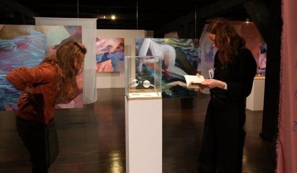 Going.   Oprowadzanie po nowych wystawach w Wozowni - Galeria Sztuki Wozownia