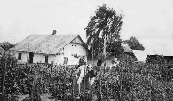 Going. | Podlwowska wieś Sokolniki na dawnej fotografii [wystawa czasowa] - Muzeum Etnograficzne/Ethnographic Museum