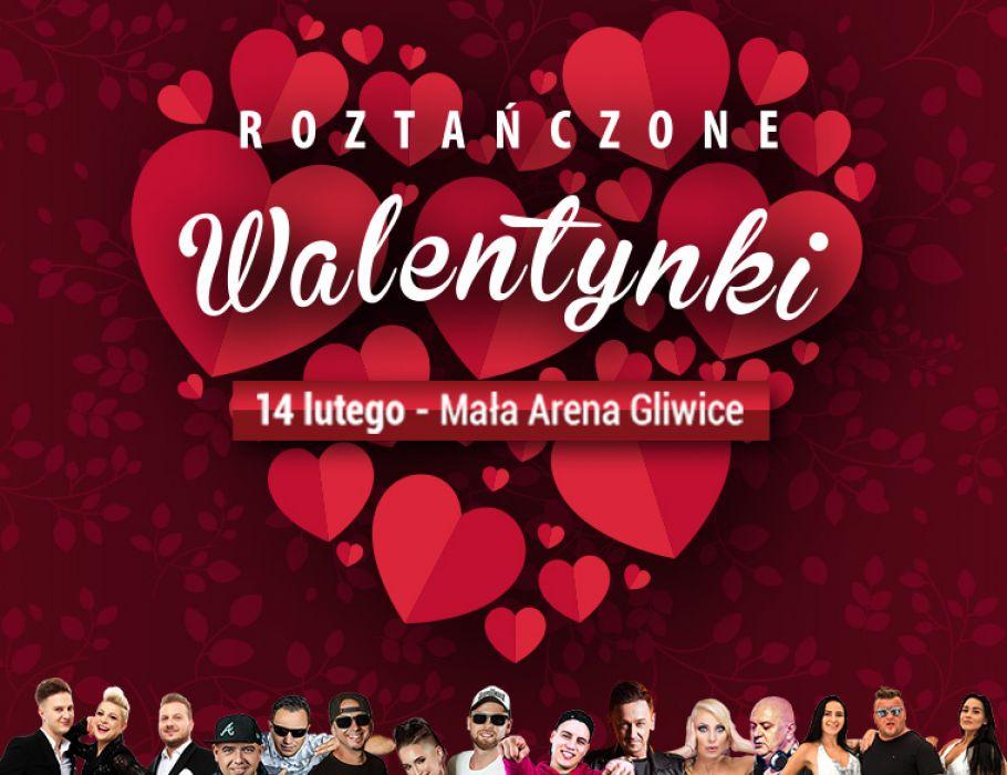 90 Festival & Śląski Festival Disco Polo prezentują: Roztańczone Walentynki