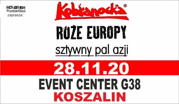 Going. | Kobranocka, Sztywny Pal Azji, Róże Europy - Event Center G38