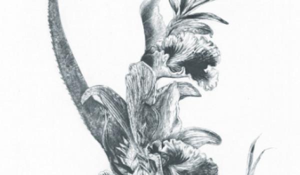 Going. | Joanna Krajewska – Formowanie gatunku | wystawa - Online | Artystyczna Podróż Hestii