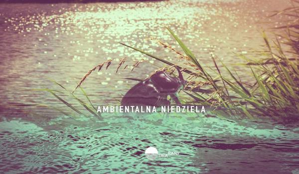 Going.   Niedziela ambientalna - Odra-Pany