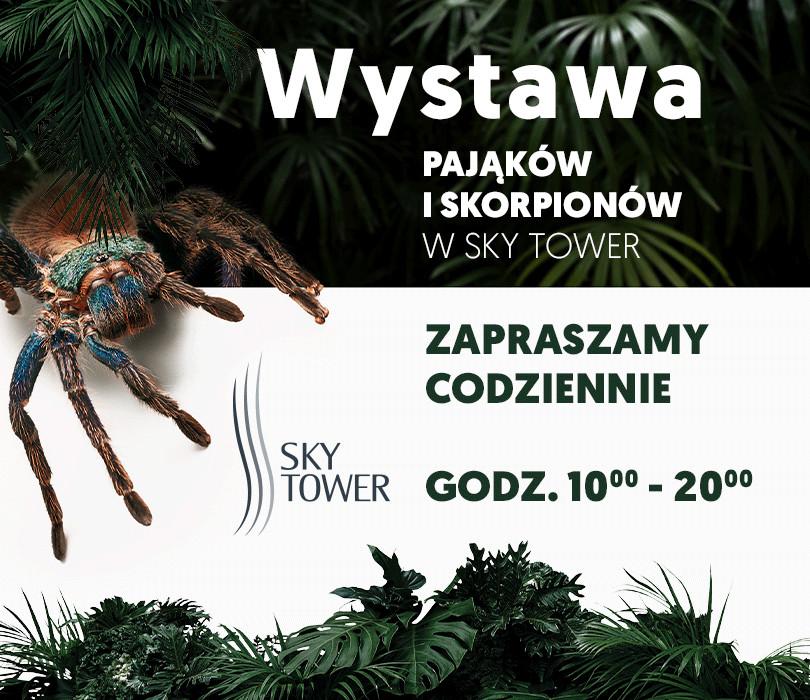 Wystawa pająków w Sky Tower we Wrocławiu [OTWARTE OD 12.02]