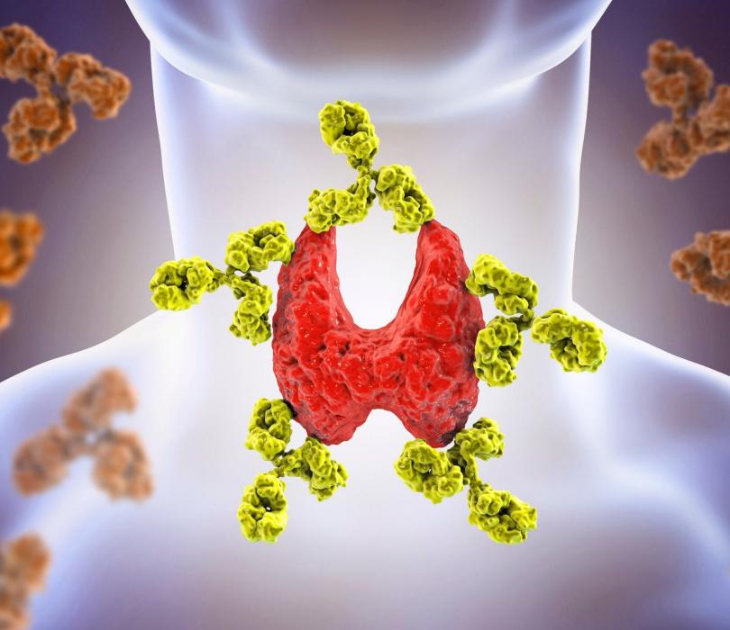 Dieta w chorobie Hashimoto. Co pomaga w świetle badań?
